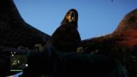 Far Cry 4 Eagle Attack